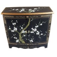 Hand Painted Blossom 2 Door Cabinet